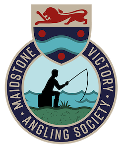 Forum - Maidstone Victory Angling Society